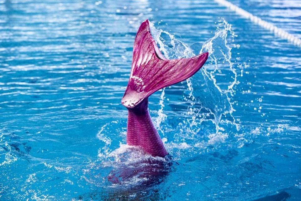 Leer zwemmen als een echte zeemeermin of zeemeerman!