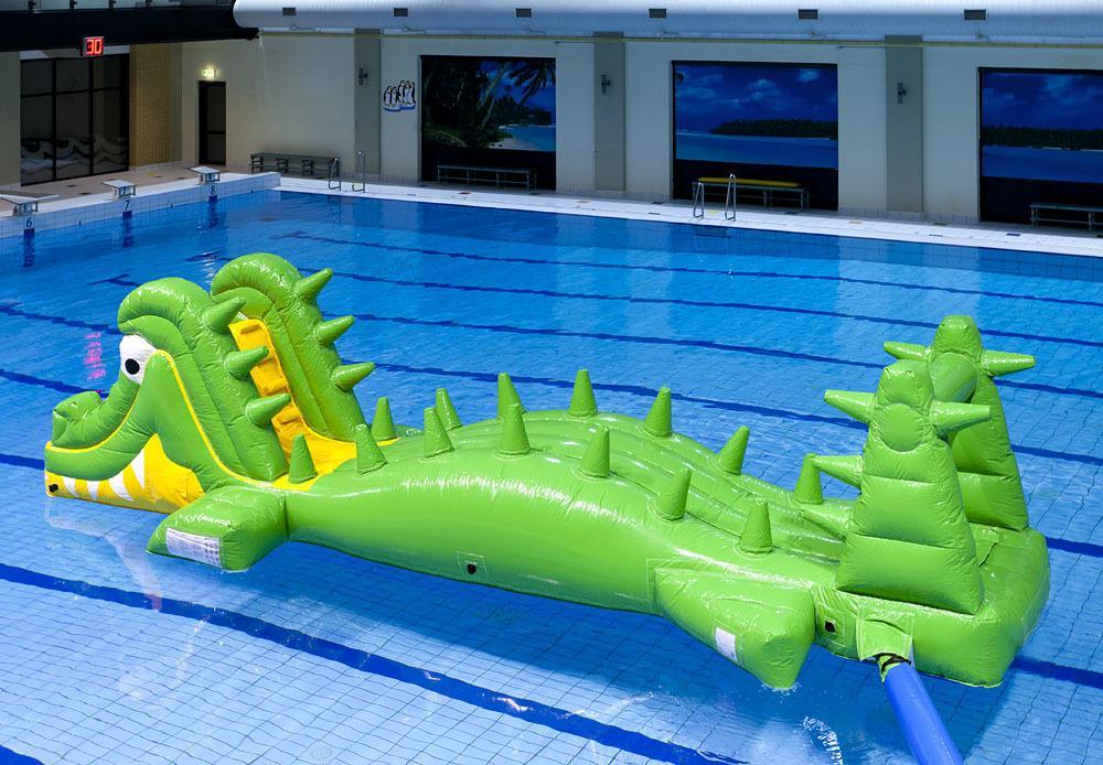Krokodil in Molenduinbad Norg