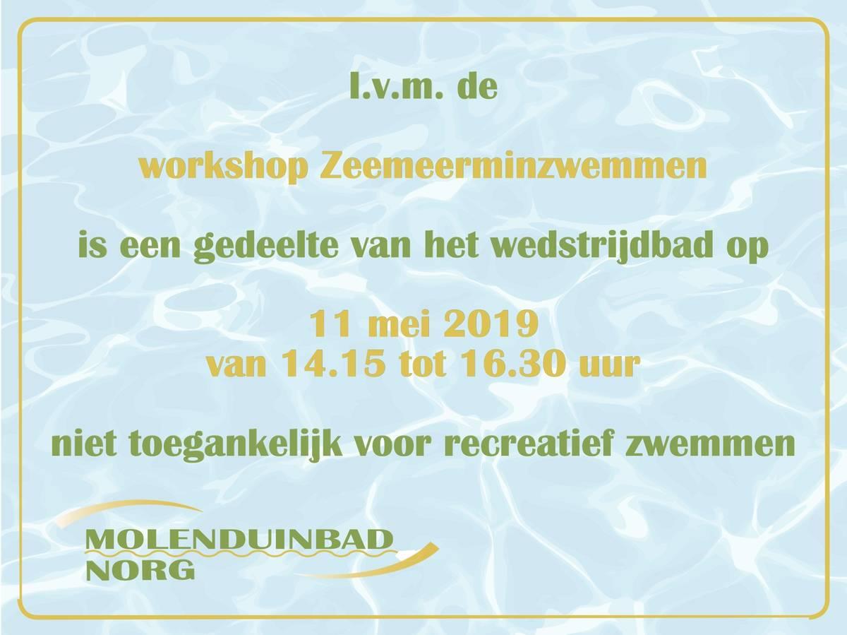 Zeemeerminzwemmen 11 mei 2019